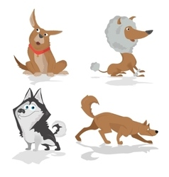Funny dogs of various breeds standing in side view vector