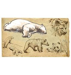 Animals theme BEARS - hand drawn pack vector image