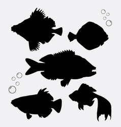 fish animal silhouette vector image