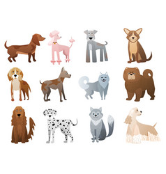 Funny and cute cartoon dogs and puppy pet vector