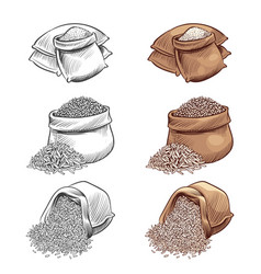 Hand drawn rice sacks set sketch rice vector