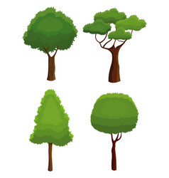 Tree nature various plant environment vector