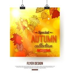 Autumn flyer with shining foliage sale vector