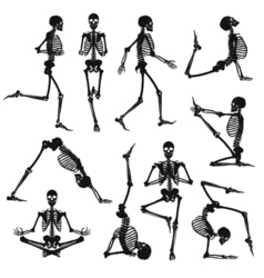 Black Human Skeletons Background vector image