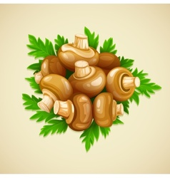 Organic food mushrooms vector image