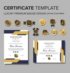 Professional certificate design with badge vector