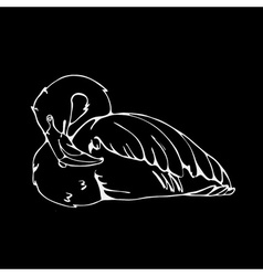 Hand-drawn pencil graphics flamingo Engraving vector image