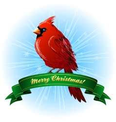 Christmas frame with northern cardinal vector