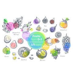 fruits hand drawn icons set fresh organic food vector image