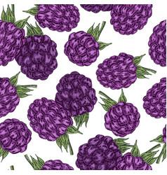 hand drawn sketchy berries ripe blackberry branch vector image