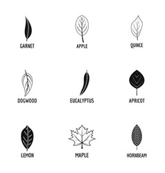 Tree leave icons set simple style vector