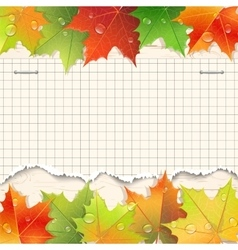 Torn paper sheet and autumn maple leaves vector image vector image