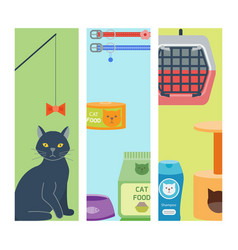 Colorful cat accessory cards animal icons vector
