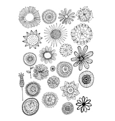 Flowers collection sketch for your design vector image