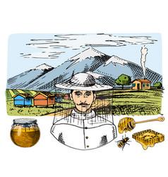 apiary farm hand drawn vintage honey making vector image