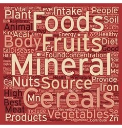 Marvellous Minerals text background wordcloud vector