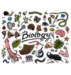 Scientific laboratory in biology icon set of vector