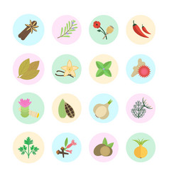 Set of spice vector