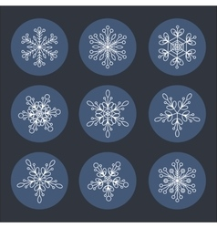 Snowflakes set icon Background for winter vector image