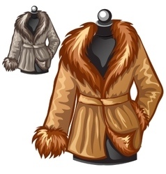 Womens brown winter coat with fur collar vector