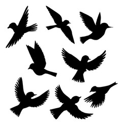 set of flying birds silhouettes vector image