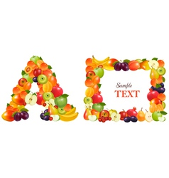 frame made from fruit vector image