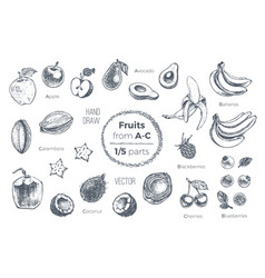 fruits hand drawn sketch icons set organic food vector image