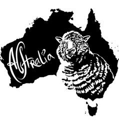 Merino ewe on map of Australia vector