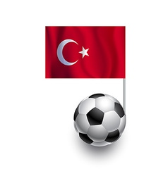 Soccer Balls or Footballs with flag of Turkey vector