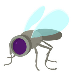 Spy fly icon cartoon style vector