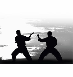 two men demonstrate karate vector image