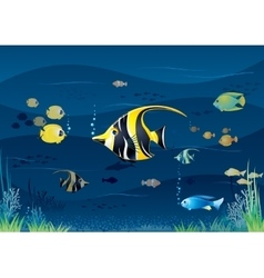 Underwater Background Cartoon vector