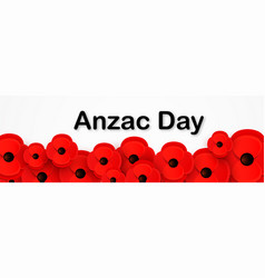 Anzac day remembrance web header poppies vector