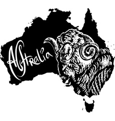 Merino ram on map of Australia vector