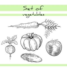 VegetablesSet vector image