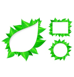 abstract fresh green leaves vector image vector image