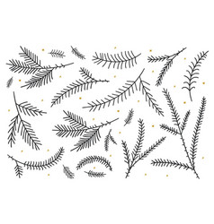 christmas silhouettes fir-tree branches vector image