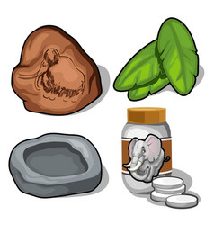 Elephant and mammoth topic banana leaves pills vector