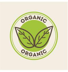 Leaves organic icon vector