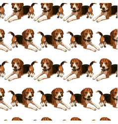 Seamless background with beagle vector