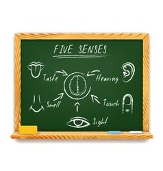 The Five Senses vector image vector image