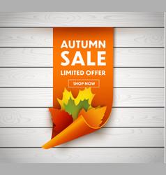 autumn sale price tag vector image