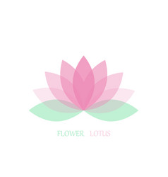 lotus flower in flat style pink and green color vector image