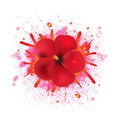 Red hibiscus flowers with blob vector