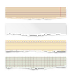 ripped colorful paper strips isolated on white vector image