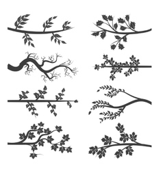 Tree branches with leaves silhouette vector image