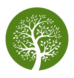 White tree icon in green round vector image vector image