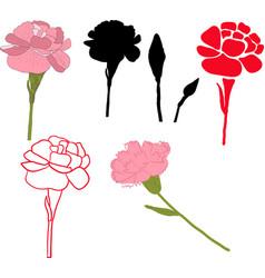 Floral carnation retro vintage background vector