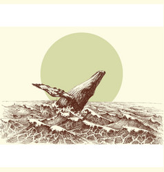 Humpback whale jumping out of the water in the vector