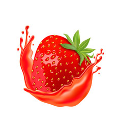 ripe strawberry with juice isolated on white vector image